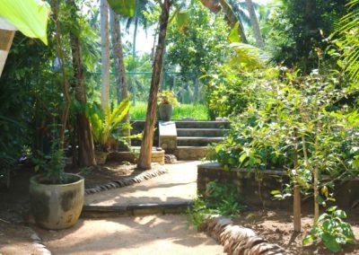 Villa Svara - Gallery - Back Garden